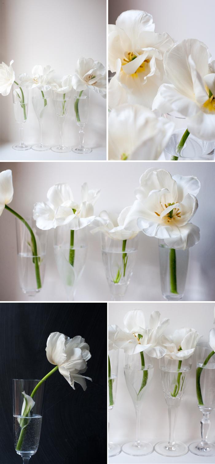 tulips_edited-2